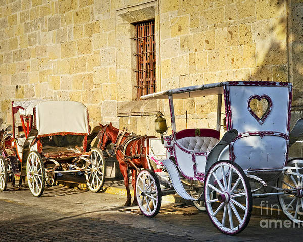 Carriages Poster featuring the photograph Horse Drawn Carriages In Guadalajara by Elena Elisseeva