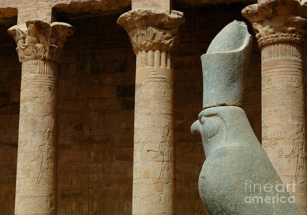 Horus Poster featuring the photograph Horus Temple Of Edfu Egypt by Bob Christopher