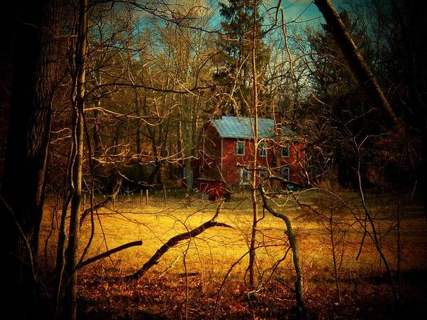 West Virginia Poster featuring the photograph House In The Forest by Joyce Kimble Smith