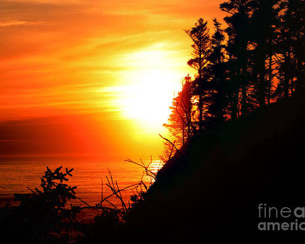 Sunset Poster featuring the photograph Hug Point Sunset Oregon by Nick Gustafson