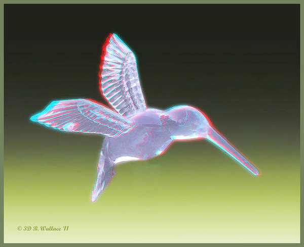 3d Poster featuring the photograph Hummingbird - Use Red-cyan 3d Glasses by Brian Wallace