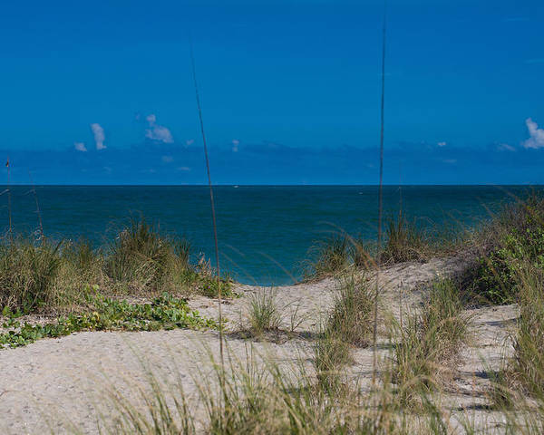 Beach Poster featuring the photograph Hutchinson Island Heaven by Trish Tritz