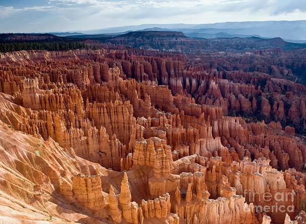 Bryce Canyon National Park Poster featuring the photograph Inspiration Point by Jim Chamberlain