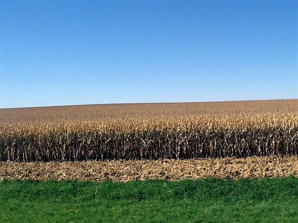 Iowa Poster featuring the photograph Iowa Landscape Iv by David Ritsema