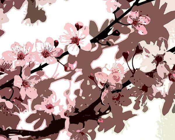 Climbing; Creeper; Flowers; Pink; Flower; Cherry; Cherries; Climb: Japanese Blossom Poster featuring the painting Japanese Blossom by Sarah O Toole