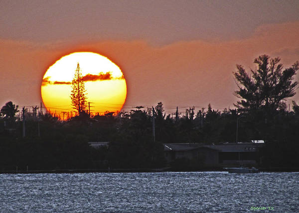 Sunset Poster featuring the photograph Key West Sunset by T Guy Spencer
