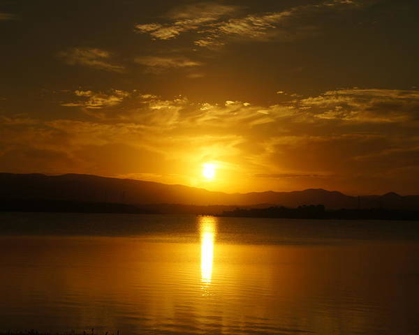 Lake Poster featuring the photograph Lake Samsonvale Sunset by Peter Lombard