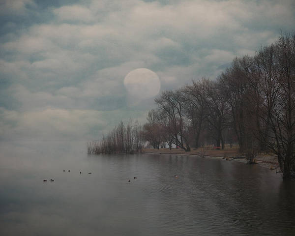 Bay Poster featuring the photograph Landscape Of Dreams by Joana Kruse
