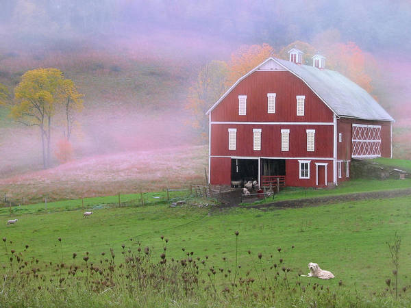 Barn Poster featuring the photograph Laurel Mountains Barn by Mark Dottle
