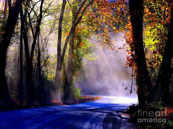 Rural Poster featuring the photograph Let Your Light Shine Down On Me by Carolyn Wright