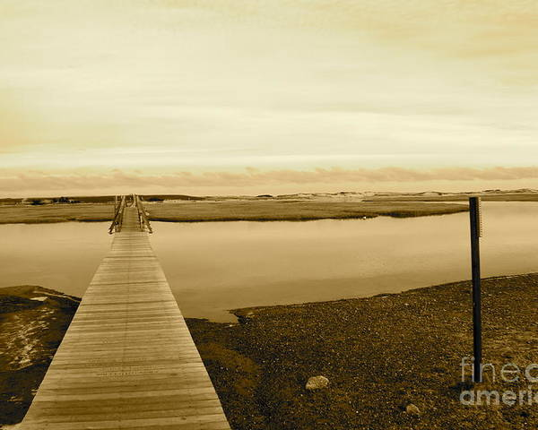 Boardwalk Poster featuring the photograph Lets Take A Walk by Eric Chapman