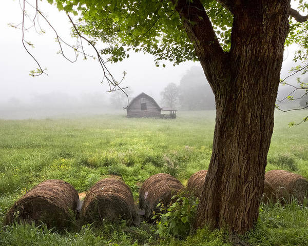 Appalachia Poster featuring the photograph Little Barn by Debra and Dave Vanderlaan