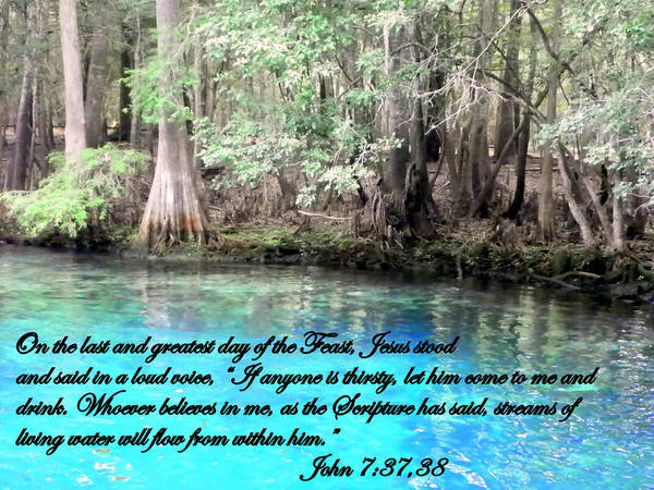 John Poster featuring the photograph Living Water by Sheri McLeroy