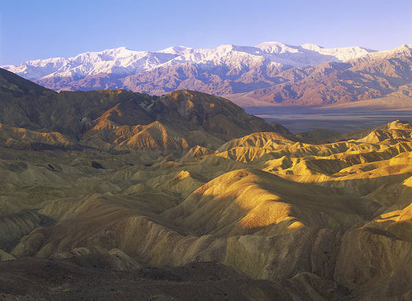 00173871 Poster featuring the photograph Looking At Panamint Range by Tim Fitzharris