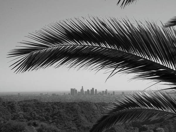 Horizontal Poster featuring the photograph Los Angeles Skyline From Hollywood Hills by Mike Shaffer