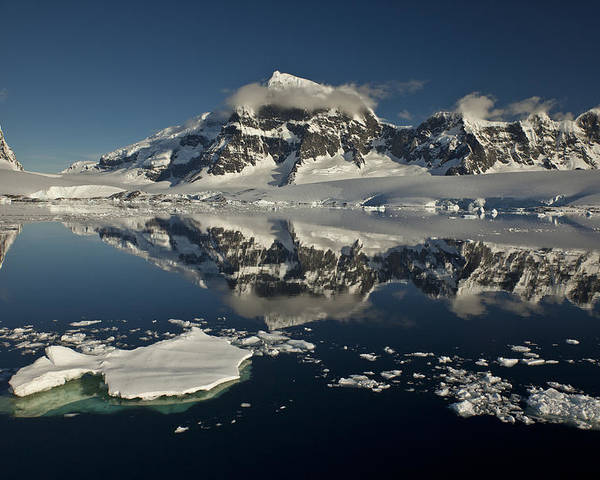 00479580 Poster featuring the photograph Luigi Peak Wiencke Island Antarctic by Colin Monteath