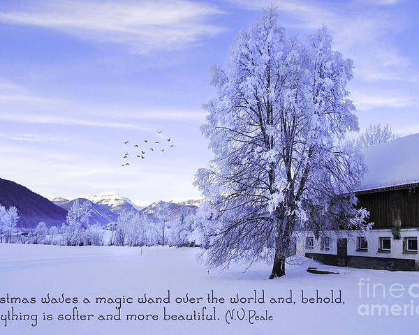 Winter Poster featuring the photograph Magic Wand by Sabine Jacobs