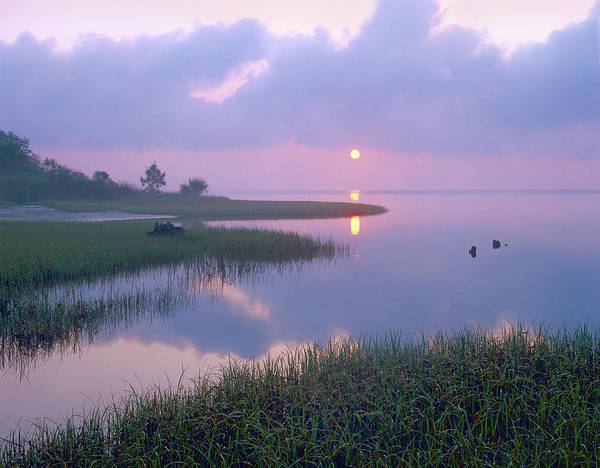 00175762 Poster featuring the photograph Marsh At Sunrise Over Eagle Bay St by Tim Fitzharris