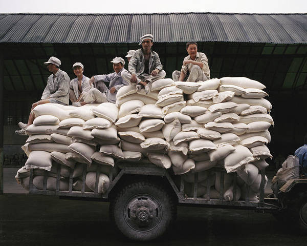 Medium Group Of People Poster featuring the photograph Men Sit On Bags Of Flour by Justin Guariglia
