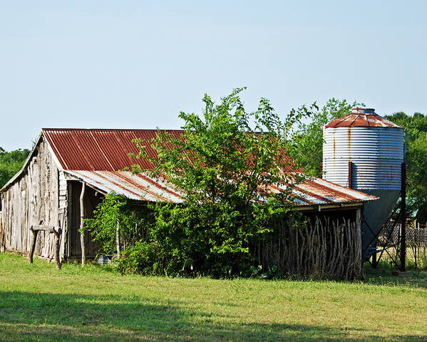 Barns Poster featuring the photograph Middle Barn by Lisa Moore