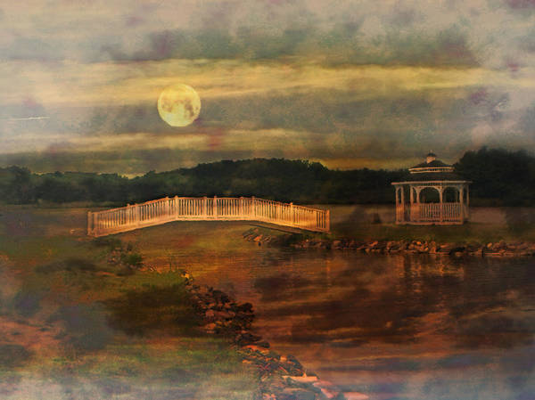 Willow Lake Poster featuring the photograph Moonlight Stroll by Kathy Jennings
