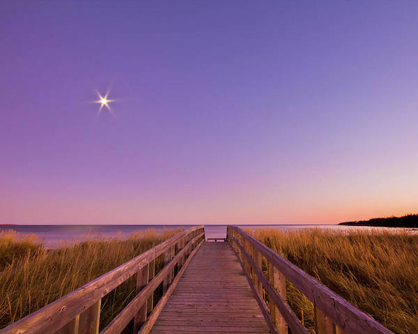 Horizontal Poster featuring the photograph Moonlit Boardwalk At Beach by Nancy Rose