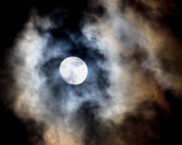 Moon Poster featuring the photograph Moonshine by Karen Scovill