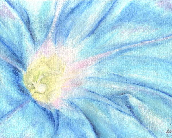 Blue Poster featuring the drawing Morning Glorious by Iris M Gross