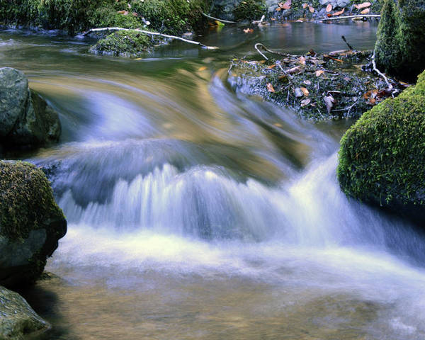Water Poster featuring the photograph Mossy Rocks by Zawhaus Photography