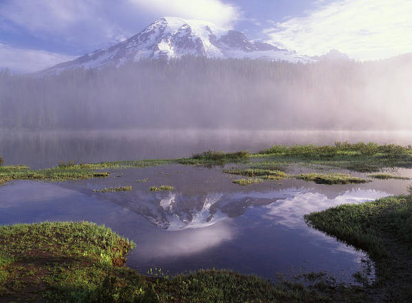 00173629 Poster featuring the photograph Mt Rainier An Active Volcano Encased by Tim Fitzharris