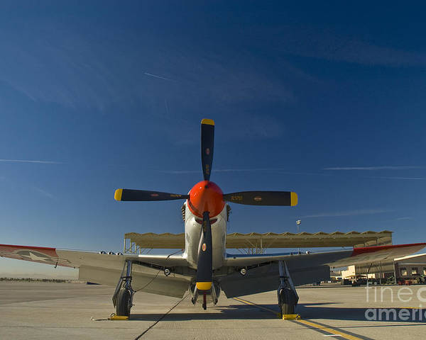 P-51 Poster featuring the photograph Mustang by Tim Mulina