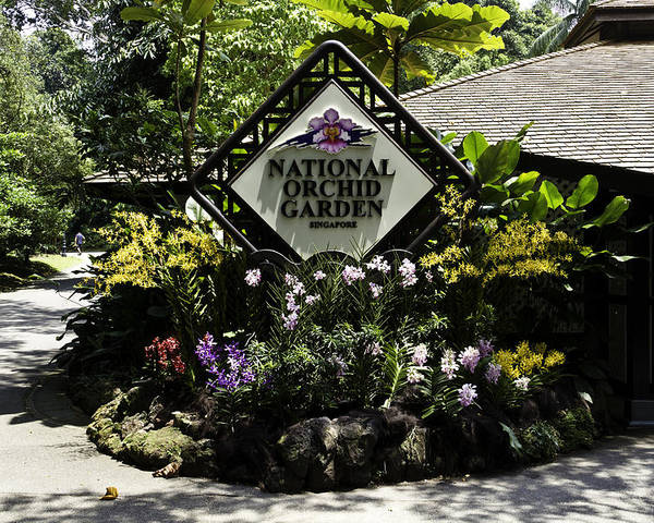 Asia Poster featuring the photograph National Orchid Garden Inside The Singapore Botanic Garden by Ashish Agarwal