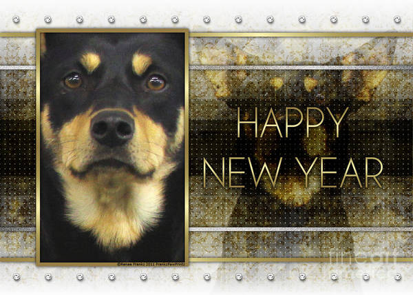 Australian Kelpie. Kelpie Poster featuring the digital art New Year - Golden Elegance Australian Kelpie by Renae Laughner