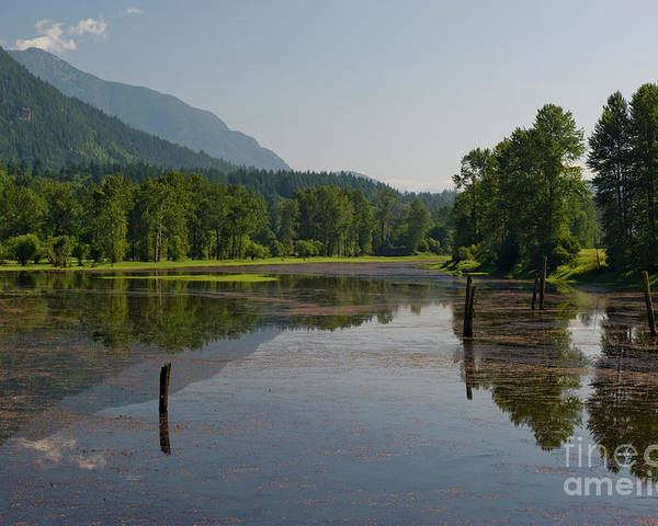 Beautiful Bc Poster featuring the photograph Nicomen Slough 2 by Rod Wiens