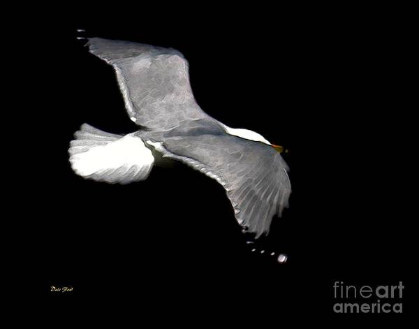 Bird Poster featuring the digital art Night Flight by Dale  Ford
