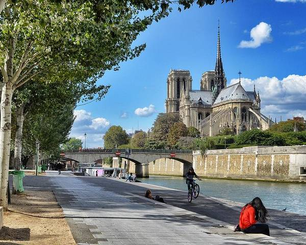 Notre Dame Cathedral Poster featuring the photograph Notre-dame by Michael Biggs