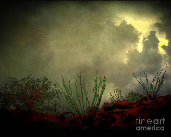 Arne J Hansen Poster featuring the photograph Occotillo And Desert Storm by Arne Hansen