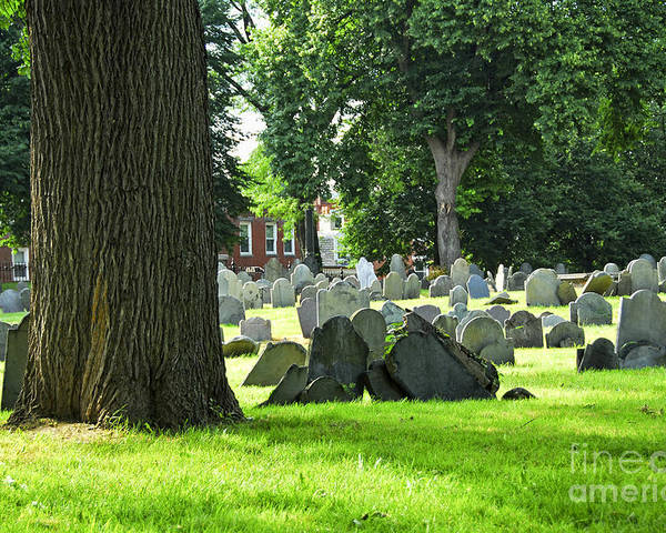 Old Poster featuring the photograph Old Cemetery In Boston by Elena Elisseeva