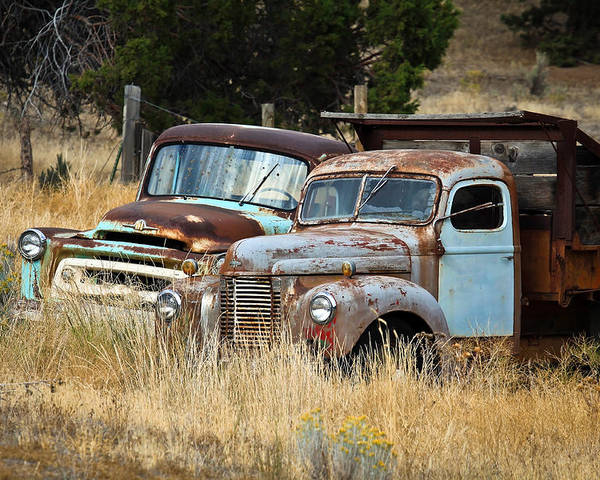 Dually Poster featuring the photograph Old Farm Trucks by Steve McKinzie