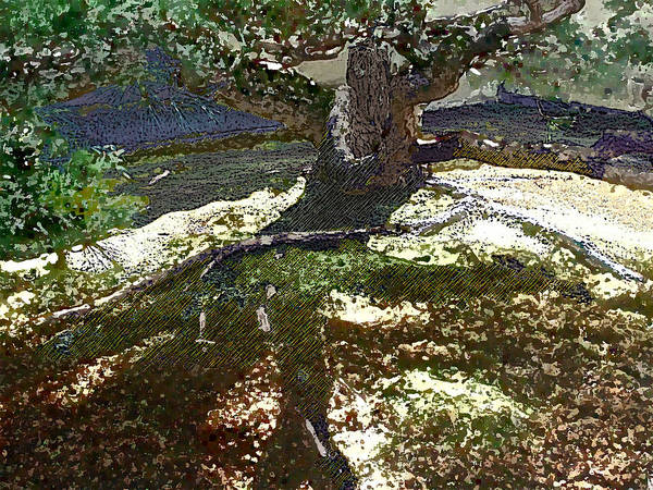 Poster featuring the digital art Old Tree II by Sally Fowler