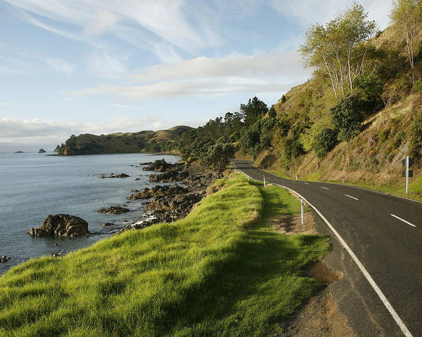 Day Poster featuring the photograph On The Road Around The Coromandel by Dawn Kish