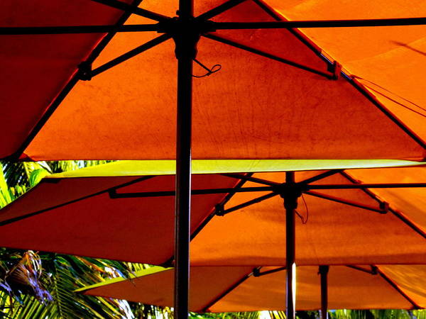 Beaches Poster featuring the photograph Orange Sliced Umbrellas by Karen Wiles