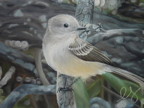 Birds Poster featuring the pastel Out On A Limb by Estephy Sabin Figueroa