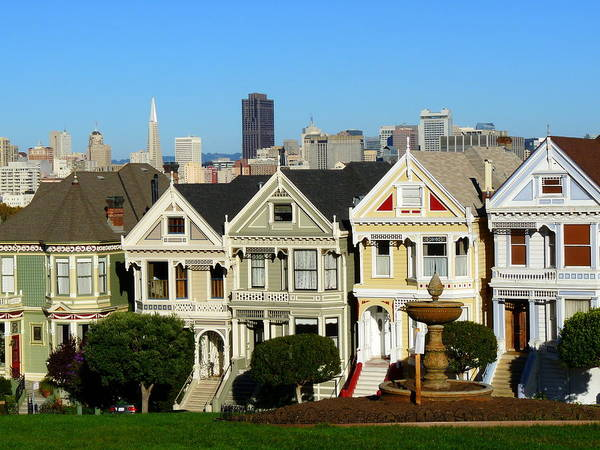 Painted Ladies Poster featuring the photograph Painted Ladies 3 by Jeff Lowe