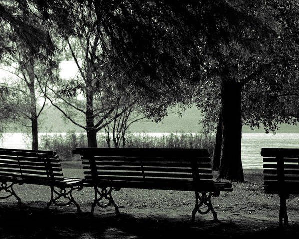Autumn Poster featuring the photograph Park Benches In Autumn by Joana Kruse