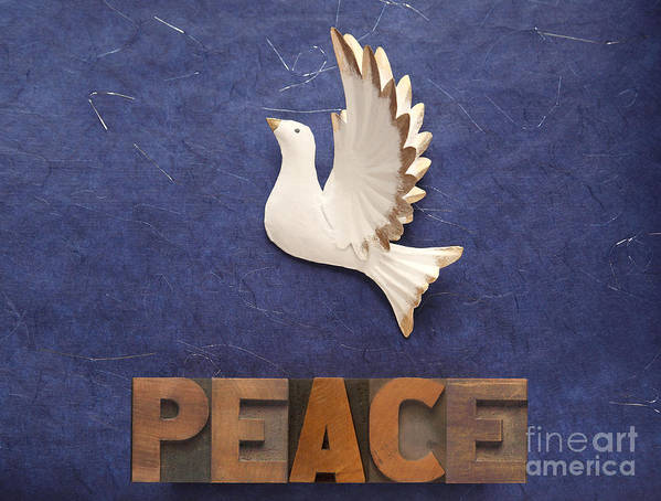 Peace Poster featuring the photograph Peace Word With Dove by Ruby Hummersmith