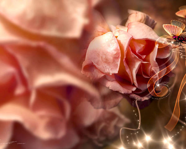 Anniversary Poster featuring the photograph Peach Roses And Ribbons by Svetlana Sewell