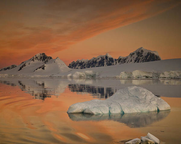 00479584 Poster featuring the photograph Peaks At Sunset Wiencke Island by Colin Monteath