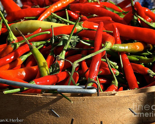 Outdoors Poster featuring the photograph Peppers And More Peppers by Susan Herber