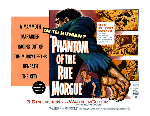 1950s Poster Art Poster featuring the photograph Phantom Of The Rue, Patricia Medina by Everett